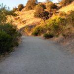 May 26: Order of Sacred Earth Nature Walk