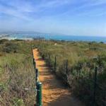 September 29: Dana Point Beach Nature Walk