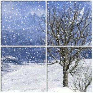 Winter Solstice Window